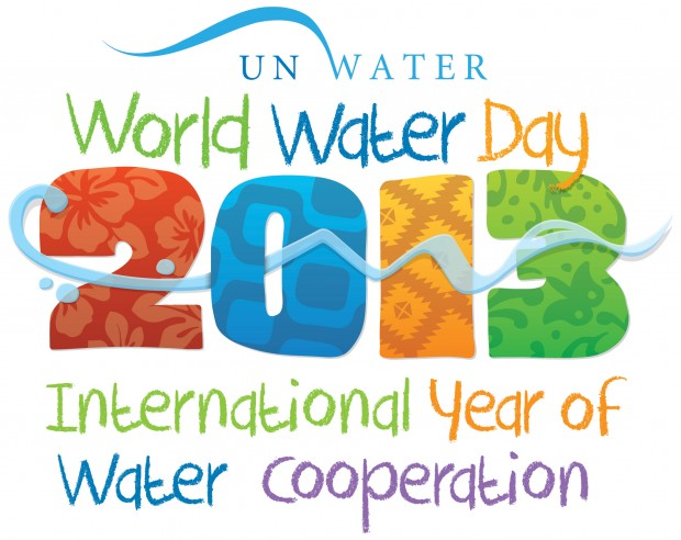 2013 UN International Year of Water Cooperation