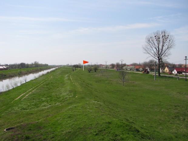 zona de plantare de la Sanmihaiu Roman