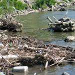 Danube Cleanup 2013